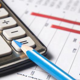 Оспаривание налоговых санкций